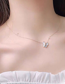Fashion Gold Color Butterfly Titanium Shell Necklace