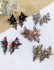 Fashion Champagne Alloy Stud Earrings