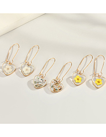 Fashion White Flowers Heart-shaped Dried Flower Resin Transparent Glass Ball Earrings