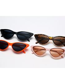 Fashion C04 Powder Frame Tea Small Frame Triangle Cat Eye Sunglasses