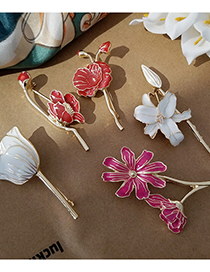 Fashion Section 5 Lily Magnolia Tulip Flower Brooch