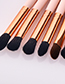 Fashion Pink Round Shape Decorated Makeup Brush (11 Pcs )