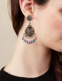 Vintage Multi-color Tassel Decorated Earrings