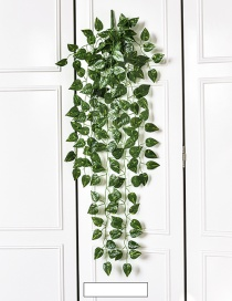 Fashion Green Epipremnum Aureum Decorated Ornament