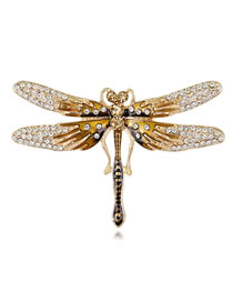 Fashion Gold Color Dragonfly Shape Decorated Brooch