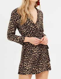 Fashion Brown Leopard Pattern Design V Neckline Dress