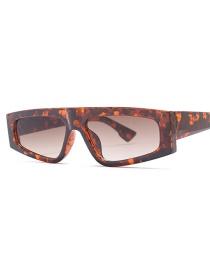 Fashion Amber Box Tea Slice C2 Geometric Sunglasses