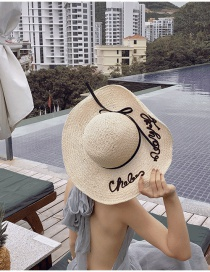 Fashion Beige Daxie Embroidered Straw Hat