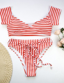 Fashion Rose Red Stripes Striped Belt Bikini