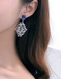 Fashion Silver S925 Sterling Silver Needle Micro-inlaid Zircon Big Fish Eat Small Fish Earrings