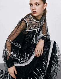 Fashion Black Embroidered Panel Tulle Dress
