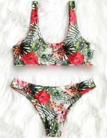 Fashion Red Printed Leaf Low-rise Split Swimsuit