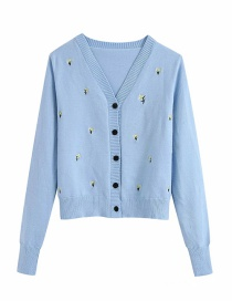 Fashion Blue V-neck Embroidery Sweater