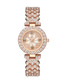 Fashion Silver Color Diamond Gypsophila Petal Pattern Quartz Steel Band Watch
