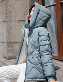 Fashion Light Green Short Slim-fit Hooded Letter Printed Quilted Jacket