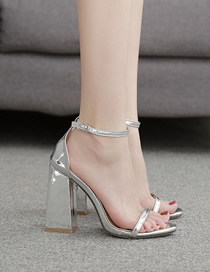 Fashion Silver High Chunky Heel Sandals With Pointed Toe