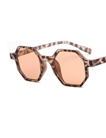 Fashion Leopard Frame Champagne Pieces Polygonal Metal Hinge Resin Sunglasses