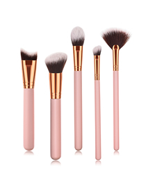 Fashion Pink Pvc5pcs Wooden Handle Aluminum Tube Nylon Hair Makeup Brush Set