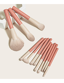 Fashion Leather Pink Set Of 12 Holiday Makeup Brushes