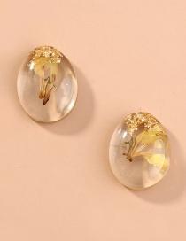 Fashion Oval Plant Dried Flower Geometric Transparent Earrings