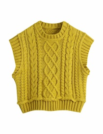 Fashion Ginger Stand-up Collar Eight-strand Knitted Vest
