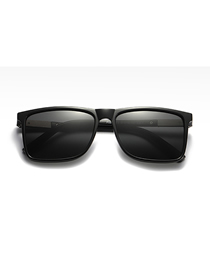 Fashion C8 Bright Black/full Gray Polarized Spring Sunglasses