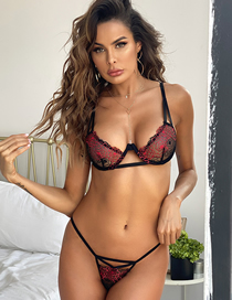 Fashion Red Lace Perspective Embroidery Underwear Set