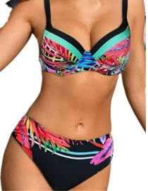 Fashion Color Printed Hard Cover Split Swimsuit