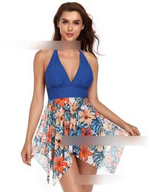 Fashion Sapphire Two-piece Mesh Swimsuit