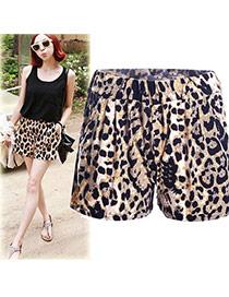 Trendy Leopard Leopard Grain Pattern Decorated Simple Design Shorts