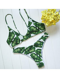 Trendy White+green Leaf Decorated Simple Design Pure Color Bikini