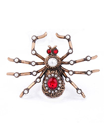 Trendy Gold Color Spider Shape Decorated Color Matching Simple Brooch