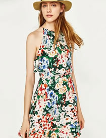 Fashion Multi-color Flower Pattern Decorated Sleeveless Dress